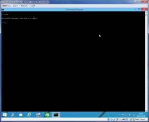 Windows10Preview コマンドプロンプト